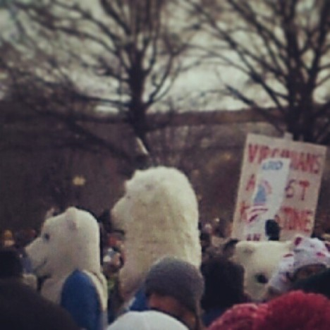 Even the polar bears were there!